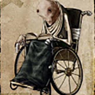 Profile picture of Udo